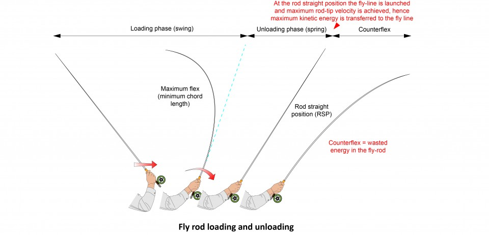 Fly rod loading and unloading (swing vs spring)
