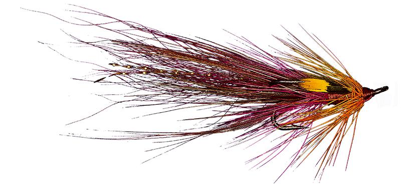 McCormack's Shrimp